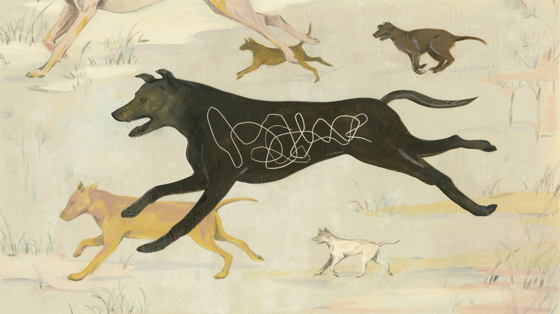 Art of a dog infested with a Guinea worm by Sally Deng for NPR
