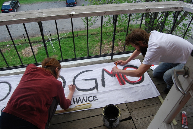 People work on a GMO protest sign.